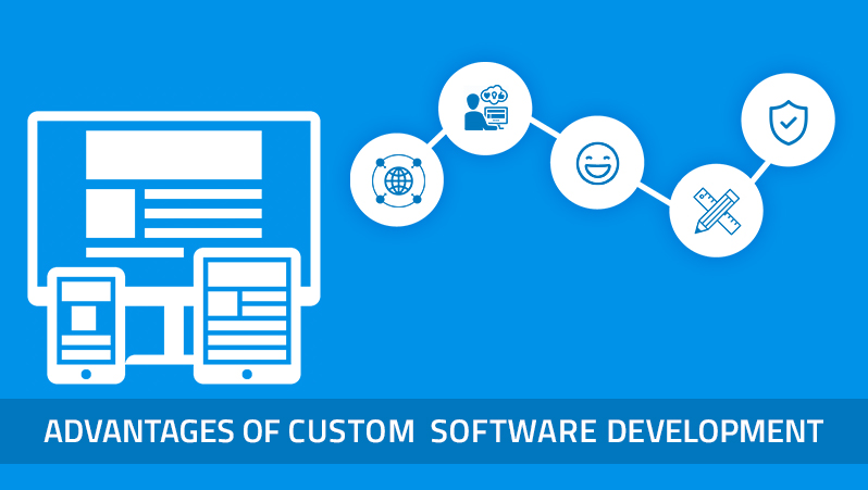 Advantages of custom software development-nbn-minds